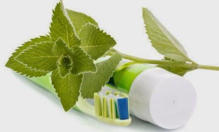 Segíti az emésztést, és javítja a vérkeringést a menta, ha így használod - Egészség | Femina