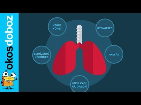 ANTSZ - A tuberkulózis és a tuberkulózis elleni védőoltás (BCG)