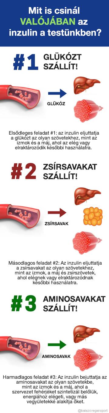 2 hét alatt majdnem 10 kiló fogyás? Lehetséges! | Well&fit