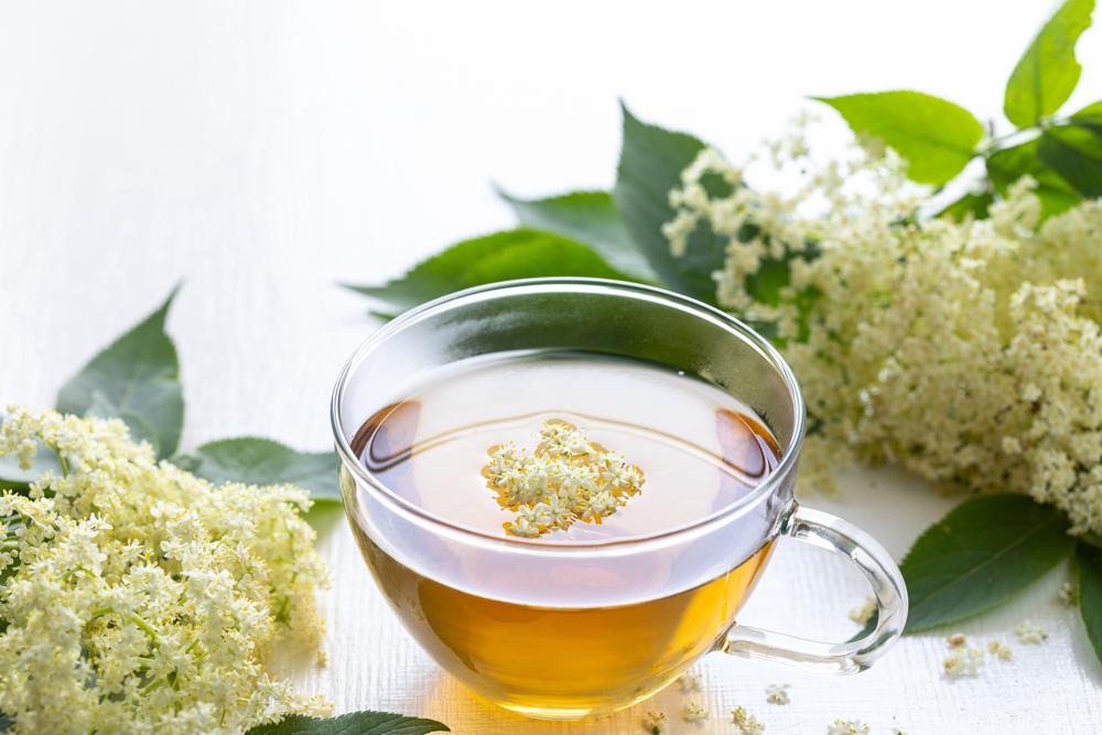 A varázsitalként emlegetett maté tea