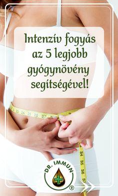 súlycsökkenés az oregon kanyarban helyreállítás wellness egyedi zsírégetés vélemények