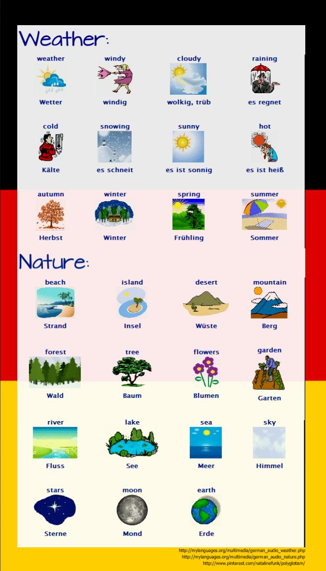 fogy auf deutsch