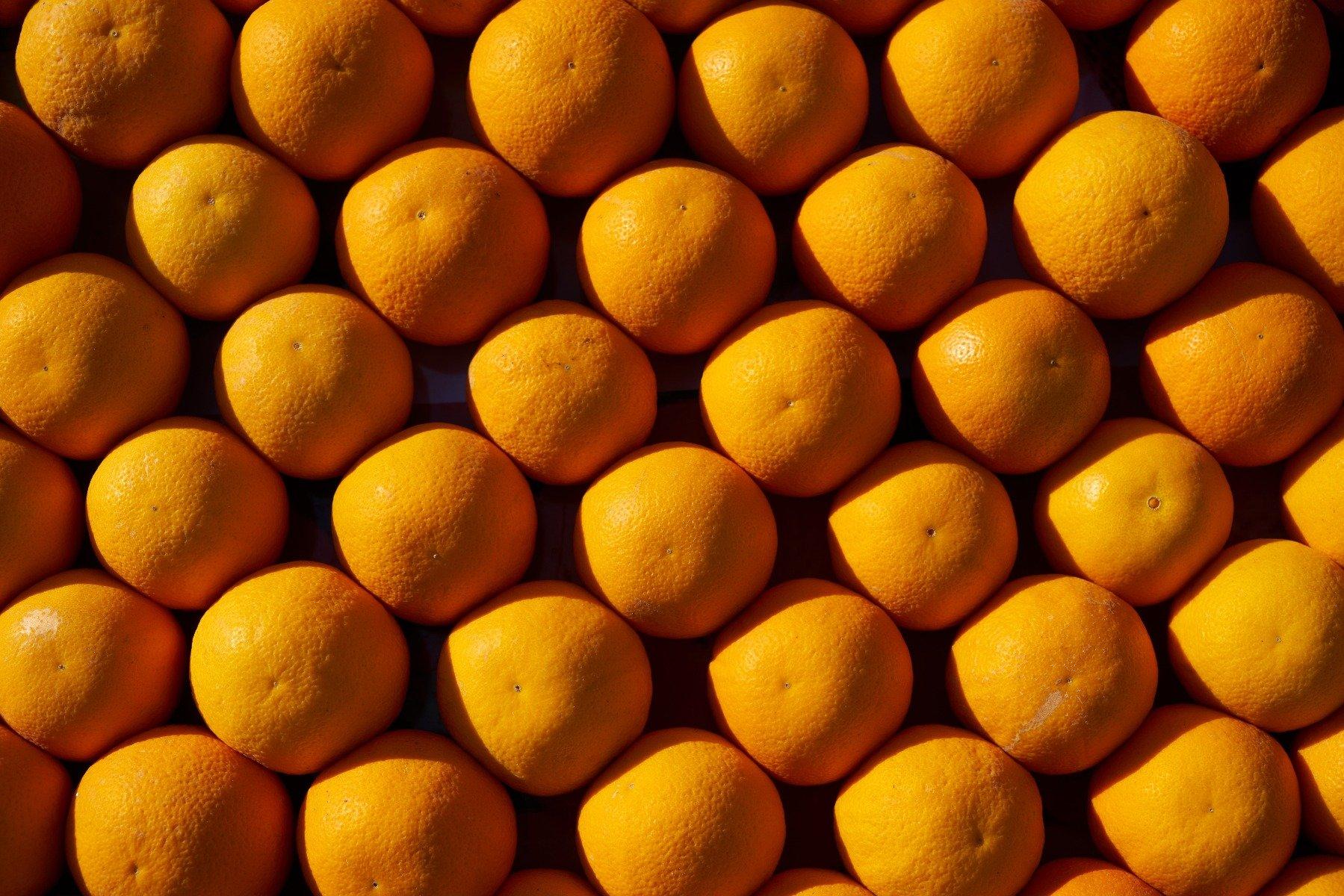 citrus megyei fogyás 60 kg fogyás 3 hónap