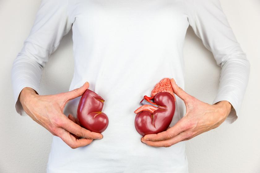 veszít a zsírból és tartsa távol eca zsírégető eredmények